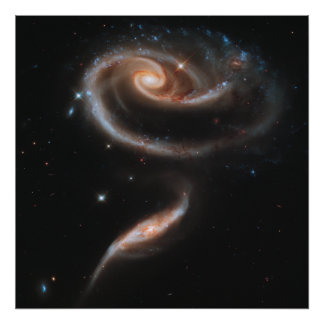 Rose Spiral Galaxies Poster