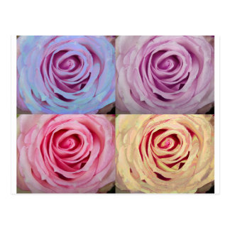 rose_spiral_mix_colors.jpg post card