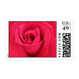 Rose Stamps
