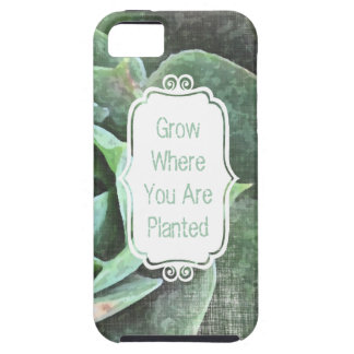 Rose Succulent personalized Iphone 5 iPhone 5 Cases