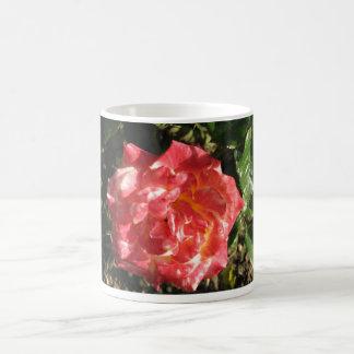 Rose Test Garden 043 Coffee Mug