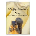 Rose & The Squirrel_ Cards