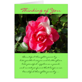 Rose... Thinking of You. Card