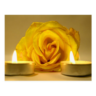 rose two candles bright yellow flower postcard