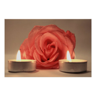 rose two candles pink floral photo poster