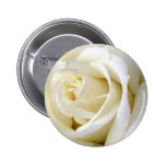 Rose White 2 Inch Round Button