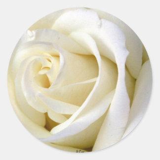 Rose White Classic Round Sticker