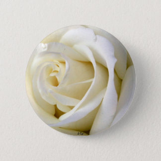 Rose White Pinback Button