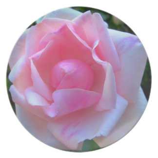 Rose White Pink Party Plate