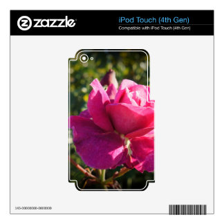 Rose with Buds Decal For iPod Touch 4G