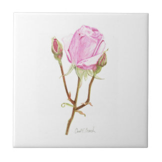 Rose with Buds Tile