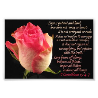 Rose with I Cor. 13: 4-7 Photograph