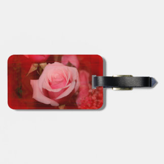 rose with red streaks pretty flower design tags for luggage