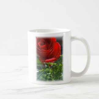 Rose with star Coffee cup Classic White Coffee Mug