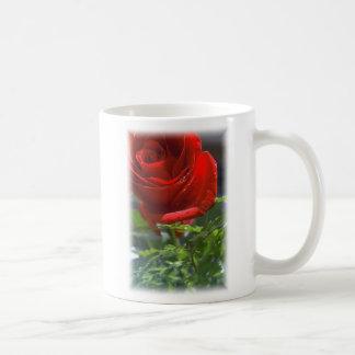 Rose with star Coffee cup Coffee Mugs