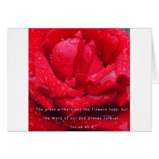 Rose with Verse Card