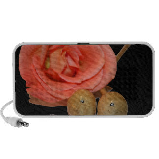 Rose with wooden percussion bell mallets iPod speaker