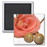 Rose with wooden percussion bell mallets refrigerator magnets
