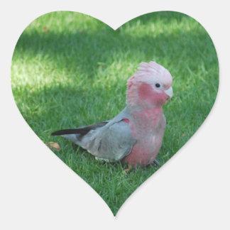 Roseate Cockatoo Heart Stickers