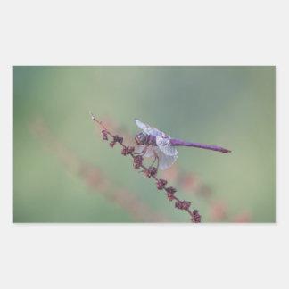 Roseate Skimmer Dragonfly Rectangular Sticker