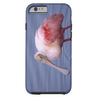 Roseate Spoonbill (Ajaia ajaja) Tough iPhone 6 Case
