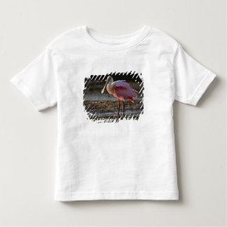 Roseate Spoonbill, Ajaia ajaja, Ding Darling Toddler T-shirt