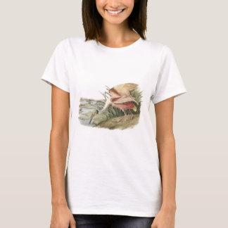 Roseate Spoonbill by Audubon T-Shirt