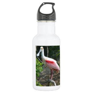 Roseate Spoonbill High Island Texas Stainless Steel Water Bottle