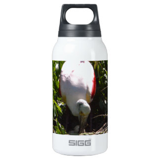 Roseate Spoonbill High Island Texas Thermos Bottle