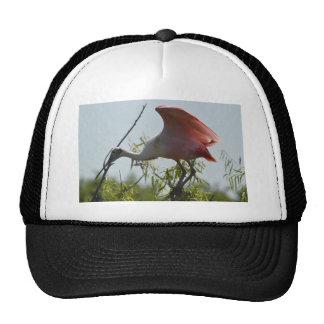 Roseate Spoonbill High Island Texas Trucker Hat