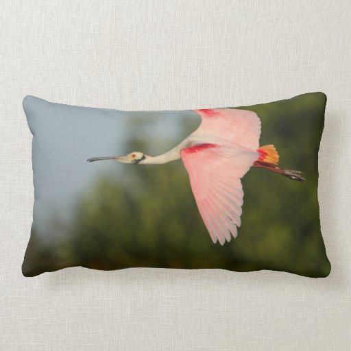 Roseate Spoonbill in Flight Throw Pillow