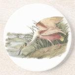 Roseate Spoonbill, John Audubon Coaster