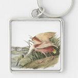 Roseate Spoonbill, John Audubon Key Chain