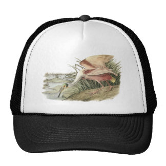 Roseate Spoonbill, John Audubon Trucker Hat