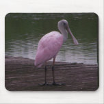Roseate Spoonbill Mouse Pad