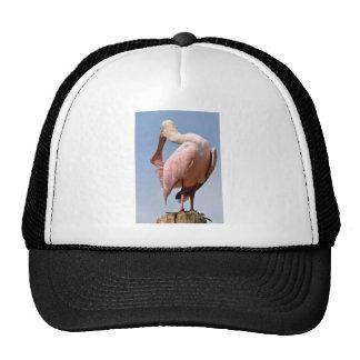 Roseate Spoonbill on wood post Trucker Hat