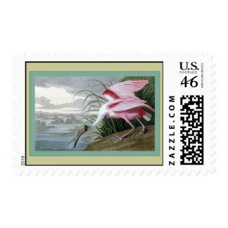 Roseate Spoonbill Stamp
