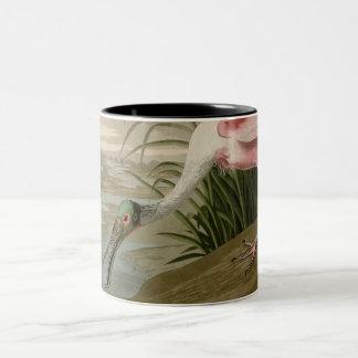 Roseate Spoonbill Two-Tone Coffee Mug