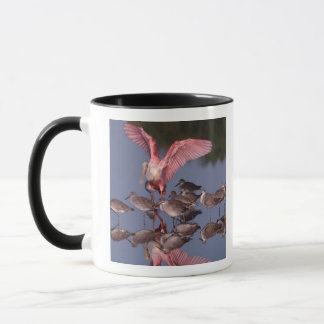 Roseate Spoonbill with Willets in shallow water Mug