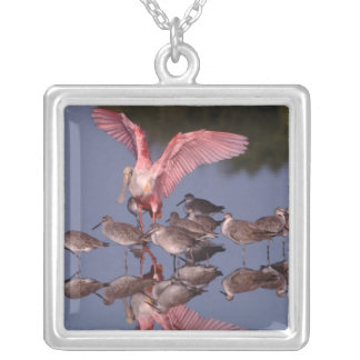 Roseate Spoonbill with Willets in shallow water Square Pendant Necklace