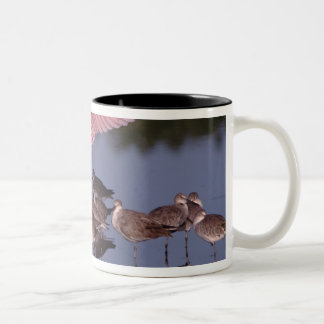 Roseate Spoonbill with Willets in shallow water Two-Tone Coffee Mug