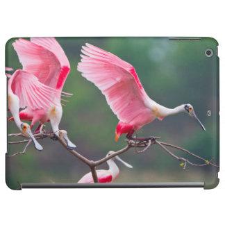 Roseate Spoonbills (Ajaia Ajaja) Landing iPad Air Cover