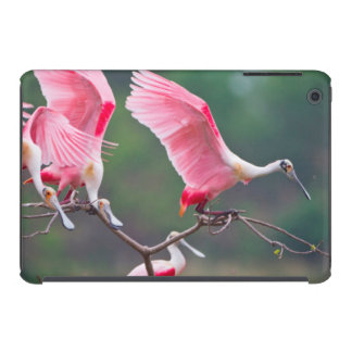 Roseate Spoonbills (Ajaia Ajaja) Landing iPad Mini Cover