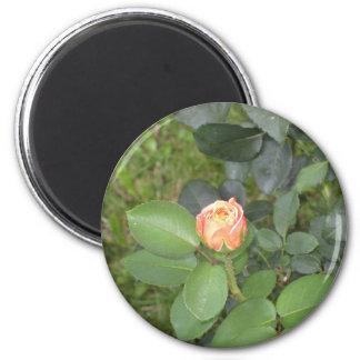 Rosebud 2 Inch Round Magnet