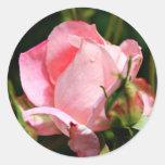 'Rosebud' Envelope seal/sticker