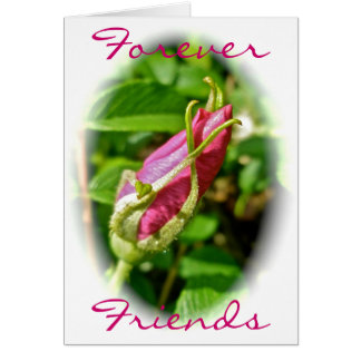 Rosebud Forever Friends Card