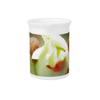 rosebud glowing drink pitcher