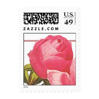 Rosebud Stamp