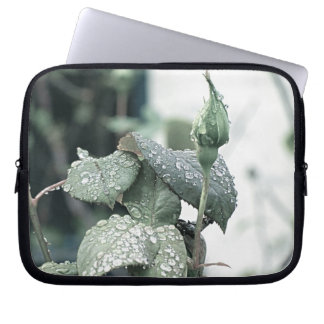 Rosebud with Rain Drop Electronic Bag