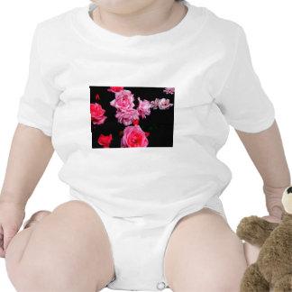 Roseconstellation Camisetas